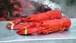 大西洋龍蝦極受饕客歡迎